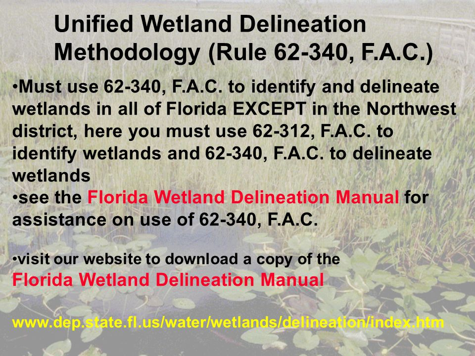 Must use 62-340, F.A.C. to identify and delineate wetlands in all of Florida EXCEPT in the Northwest district, here you must use 62-312, F.A.C. to ide