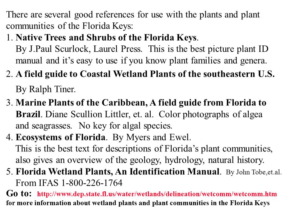 There are several good references for use with the plants and plant communities of the Florida Keys: 1. Native Trees and Shrubs of the Florida Keys. B