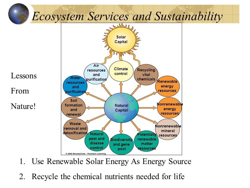 Ecosystem Services and Sustainability Solar Capital Air resources and purification Climate control Recycling vital chemicals Renewable energy resources Nonrenewable energy resources Nonrenewable mineral resources Potentially renewable matter resources Biodiversity and gene pool Natural pest and disease control Waste removal and detoxification Soil formation and renewal Water resources and purification Natural Capital 1.Use Renewable Solar Energy As Energy Source 2.Recycle the chemical nutrients needed for life Lessons From Nature!