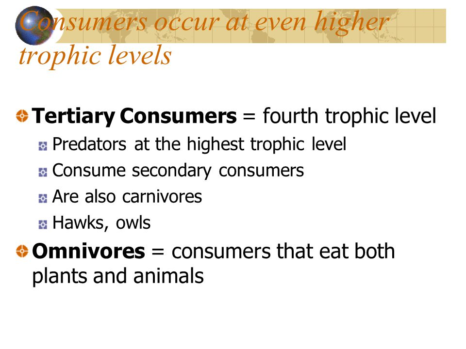 Consumers occur at even higher trophic levels Tertiary Consumers = fourth trophic level Predators at the highest trophic level Consume secondary consumers Are also carnivores Hawks, owls Omnivores = consumers that eat both plants and animals