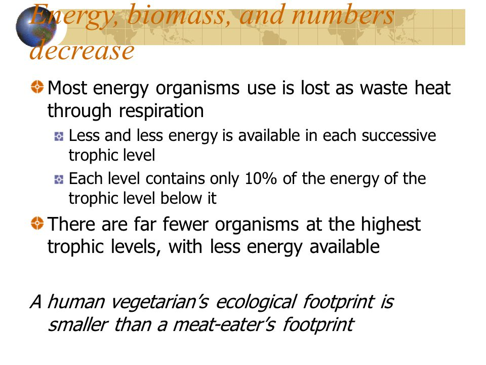 Energy, biomass, and numbers decrease Most energy organisms use is lost as waste heat through respiration Less and less energy is available in each su