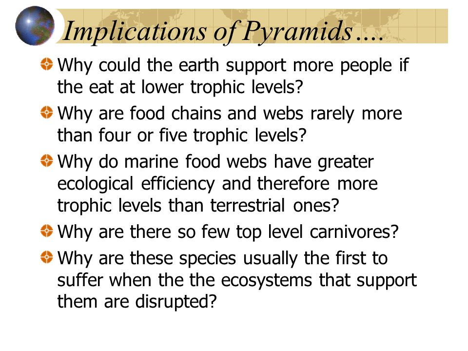 Implications of Pyramids…. Why could the earth support more people if the eat at lower trophic levels? Why are food chains and webs rarely more than f
