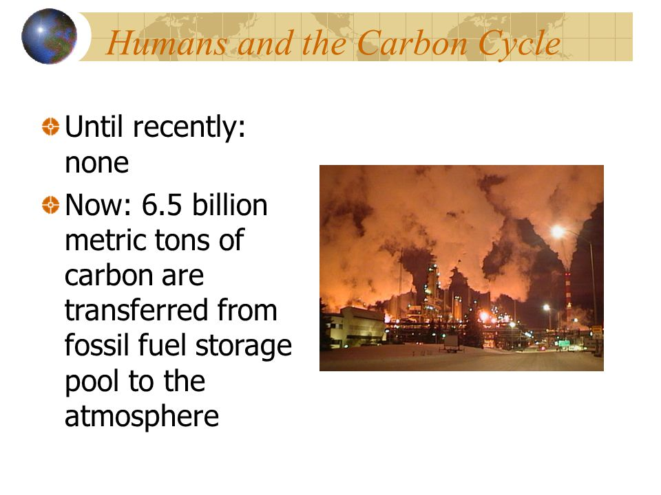 Humans and the Carbon Cycle Until recently: none Now: 6.5 billion metric tons of carbon are transferred from fossil fuel storage pool to the atmospher