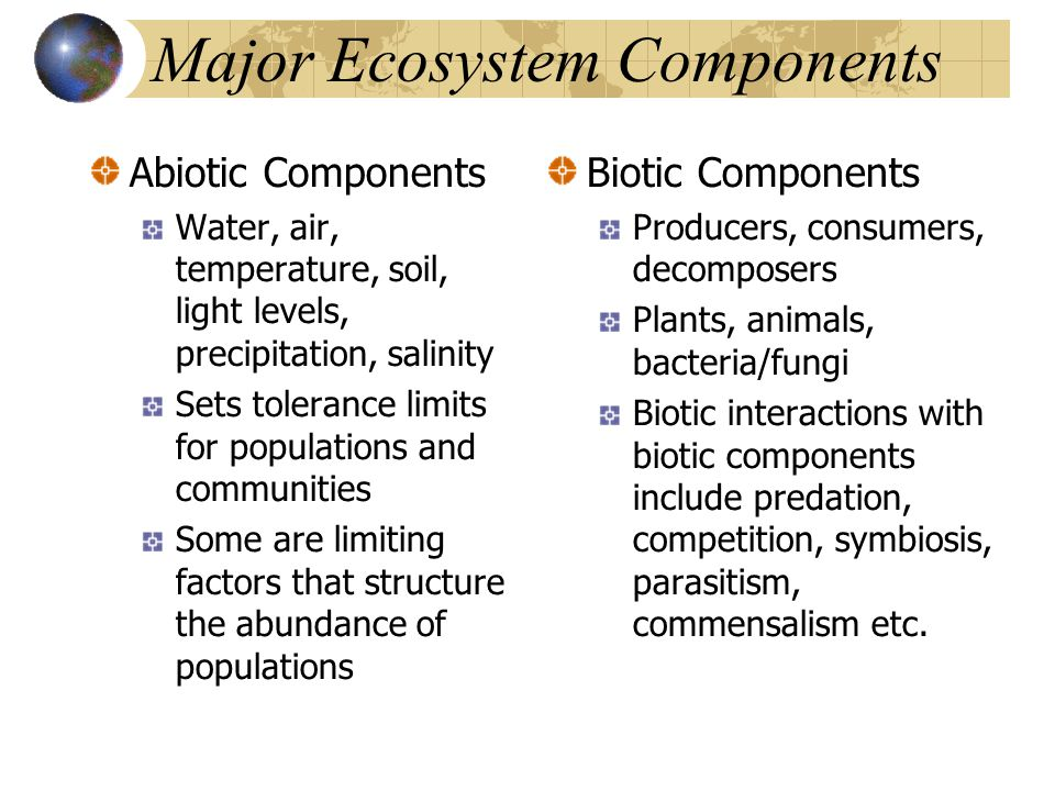 Major Ecosystem Components Abiotic Components Water, air, temperature, soil, light levels, precipitation, salinity Sets tolerance limits for populations and communities Some are limiting factors that structure the abundance of populations Biotic Components Producers, consumers, decomposers Plants, animals, bacteria/fungi Biotic interactions with biotic components include predation, competition, symbiosis, parasitism, commensalism etc.