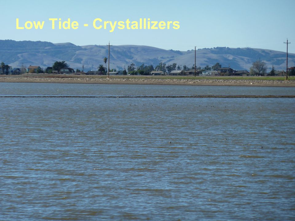 Low Tide - Crystallizers
