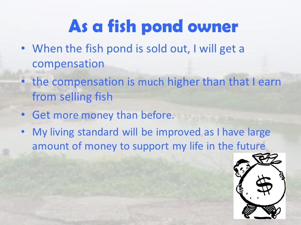 As a fish pond owner When the fish pond is sold out, I will get a compensation the compensation is much higher than that I earn from selling fish Get more money than before.