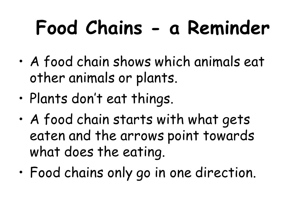Food Chains - a Reminder A food chain shows which animals eat other animals or plants. Plants don't eat things. A food chain starts with what gets eat
