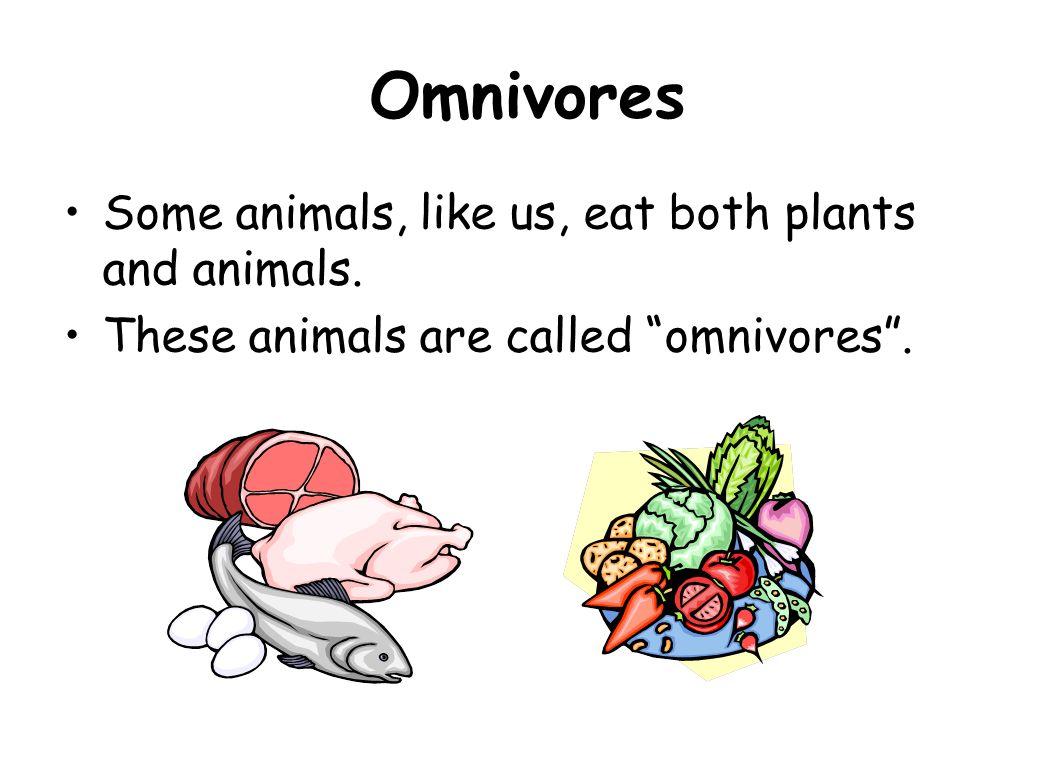 "Omnivores Some animals, like us, eat both plants and animals. These animals are called ""omnivores""."