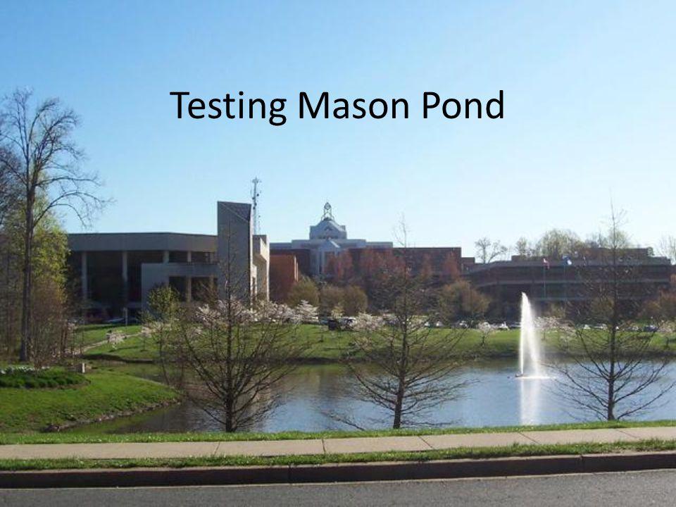 Testing Mason Pond