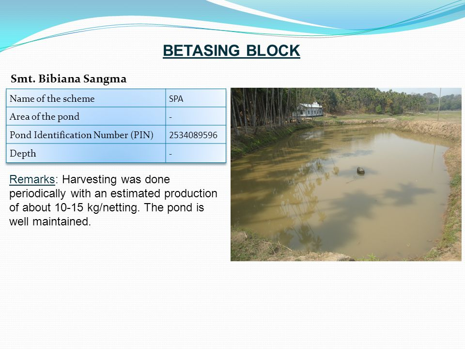 Remarks: Harvesting was done periodically with an estimated production of about 10-15 kg/netting.