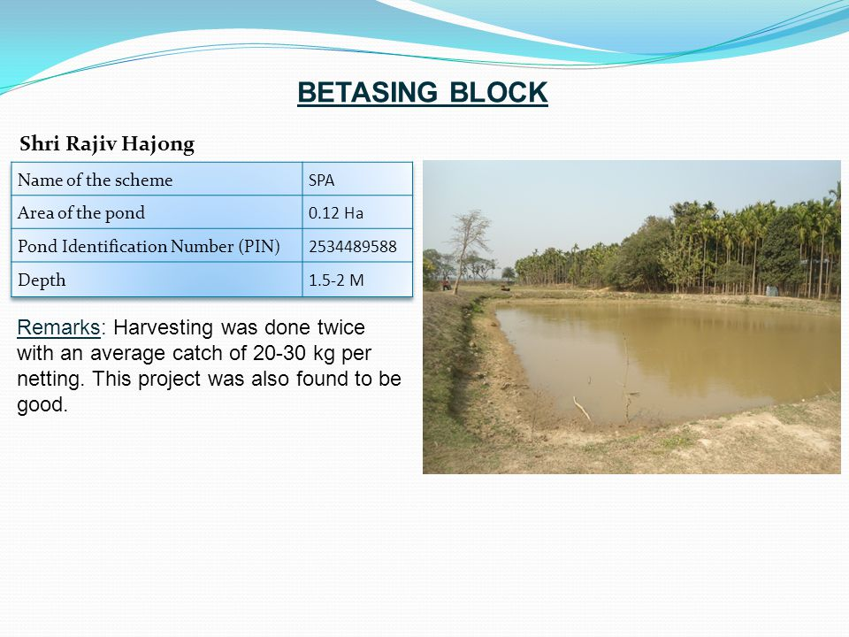 Remarks: Harvesting was done twice with an average catch of 20-30 kg per netting. This project was also found to be good. Shri Rajiv Hajong BETASING B