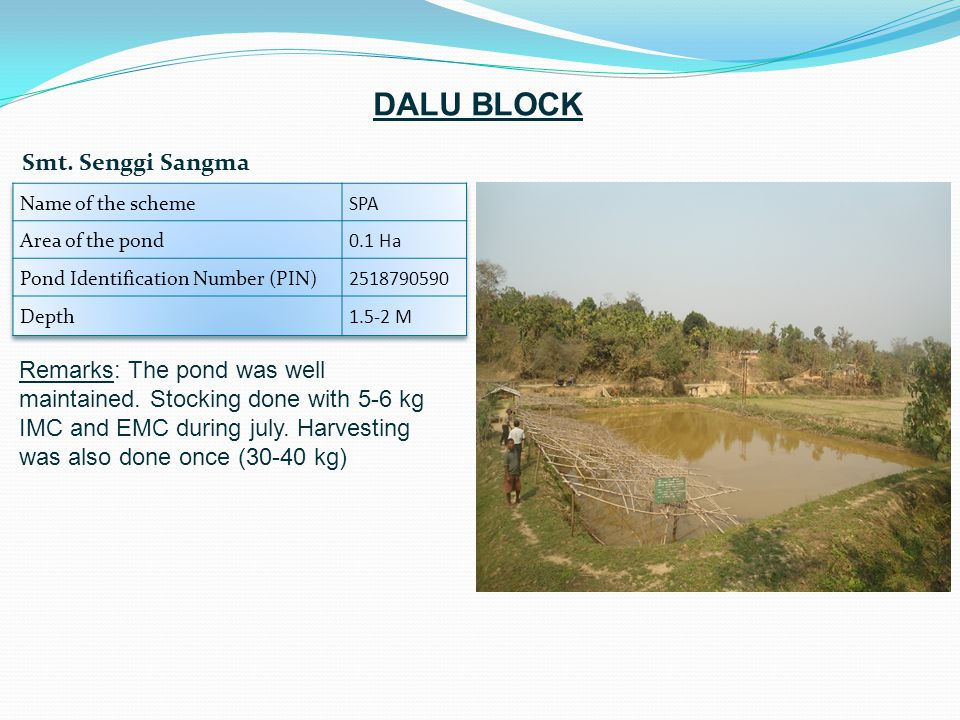 Remarks: The pond was well maintained. Stocking done with 5-6 kg IMC and EMC during july. Harvesting was also done once (30-40 kg) Smt. Senggi Sangma