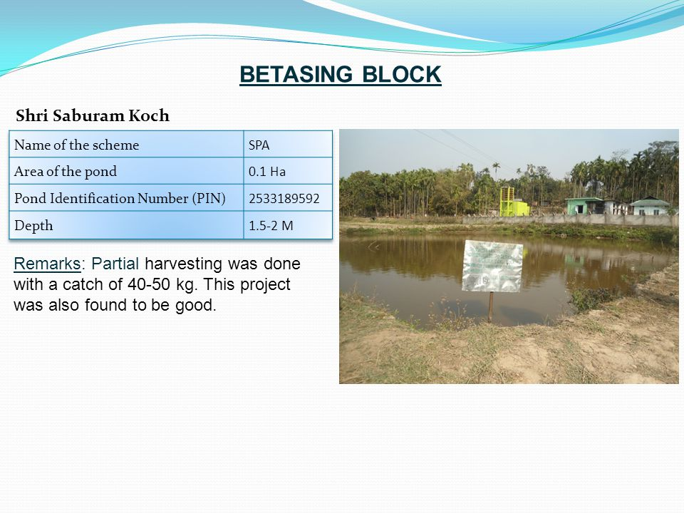 Remarks: Partial harvesting was done with a catch of 40-50 kg. This project was also found to be good. Shri Saburam Koch BETASING BLOCK