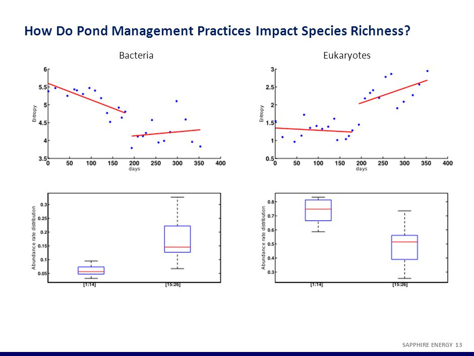 How Do Pond Management Practices Impact Species Richness? SAPPHIRE ENERGY 13 Bacteria Eukaryotes