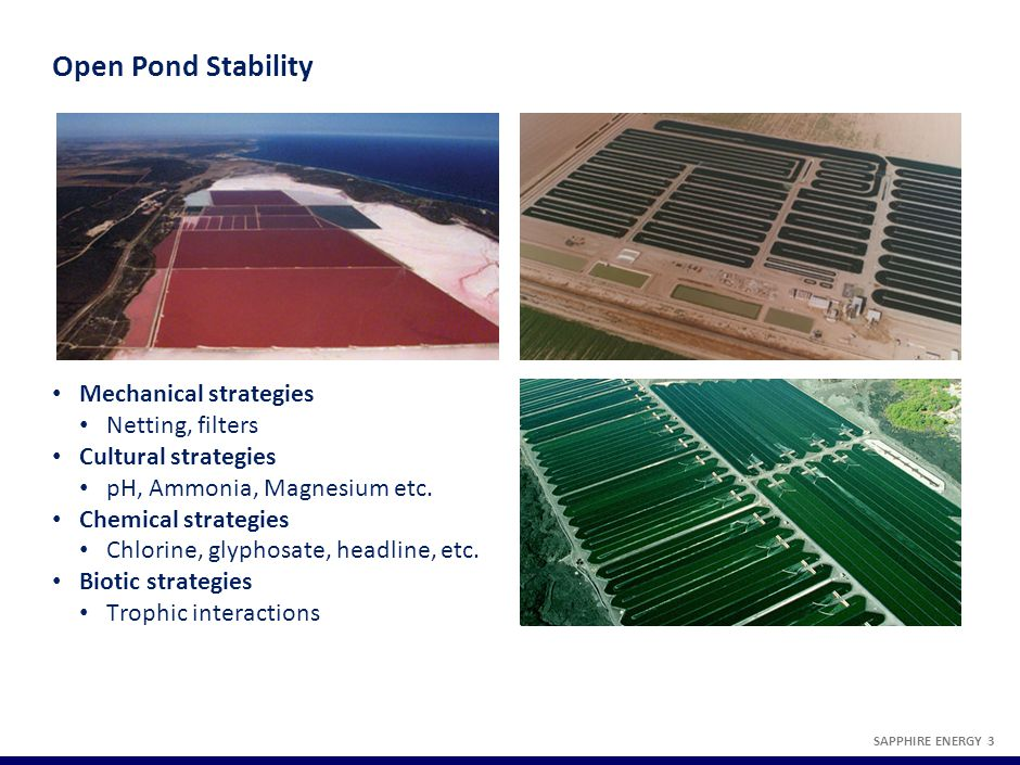 An Example of a Sapphire Pest Management Strategy SAPPHIRE ENERGY 4
