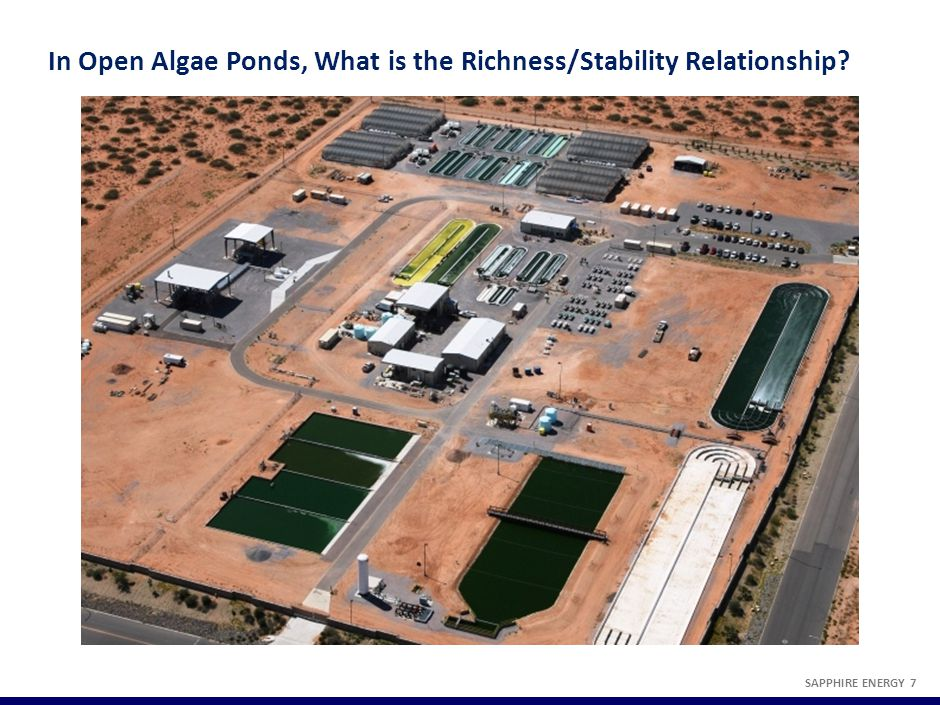 In Open Algae Ponds, What is the Richness/Stability Relationship? SAPPHIRE ENERGY 7