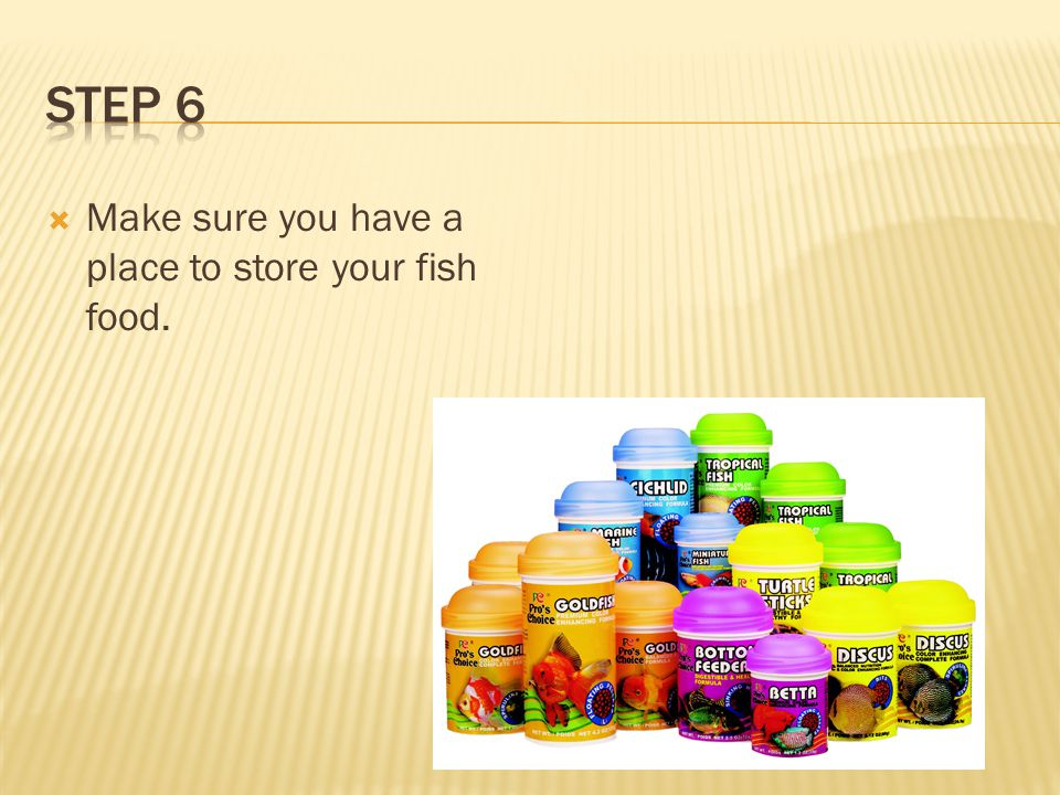  Stock your pond with baby fish to how ever many you would like to harvest.