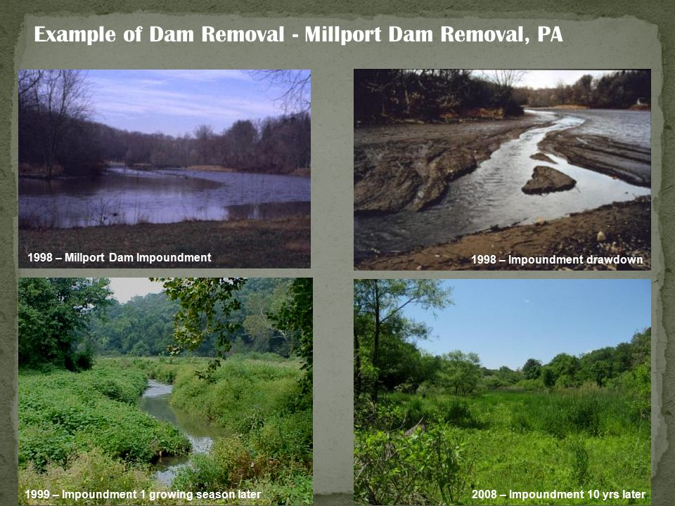 1998 – Millport Dam Impoundment 1998 – Impoundment drawdown 1999 – Impoundment 1 growing season later 2008 – Impoundment 10 yrs later Example of Dam R