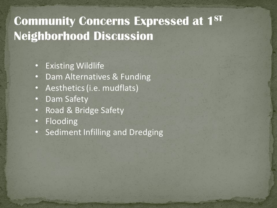 Community Concerns Expressed at 1 ST Neighborhood Discussion Existing Wildlife Dam Alternatives & Funding Aesthetics (i.e. mudflats) Dam Safety Road &