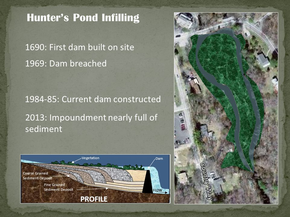 Hunter's Pond Infilling Coarse Grained Sediment Deposit Fine Grained Sediment Deposit Vegetation Dam FLOW Submerged Vegetation PROFILE Coarse Grained