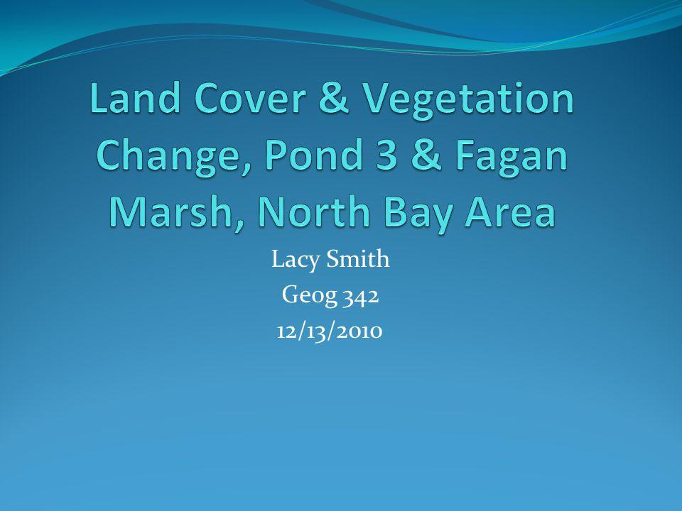 Lacy Smith Geog 342 12/13/2010
