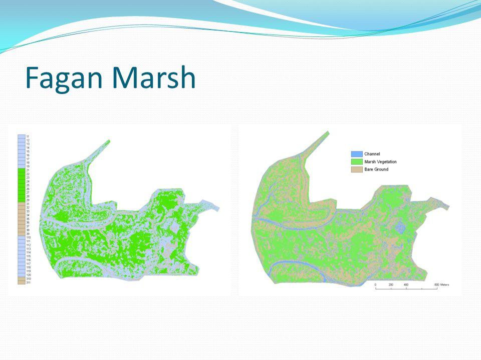Fagan Marsh