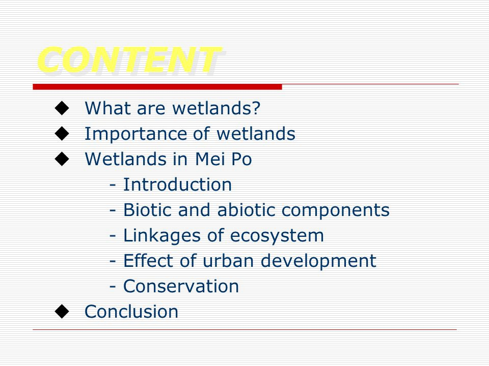 CONTENT  What are wetlands.