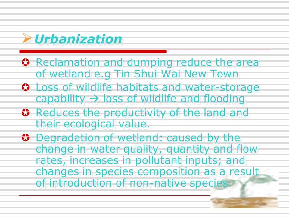  Urbanization  U Urbanization  Reclamation and dumping reduce the area of wetland e.g Tin Shui Wai New Town  Loss of wildlife habitats and water-storage capability  loss of wildlife and flooding  Reduces the productivity of the land and their ecological value.