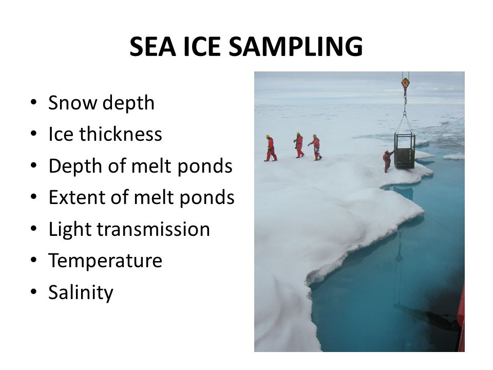 SEA ICE SAMPLING Snow depth Ice thickness Depth of melt ponds Extent of melt ponds Light transmission Temperature Salinity