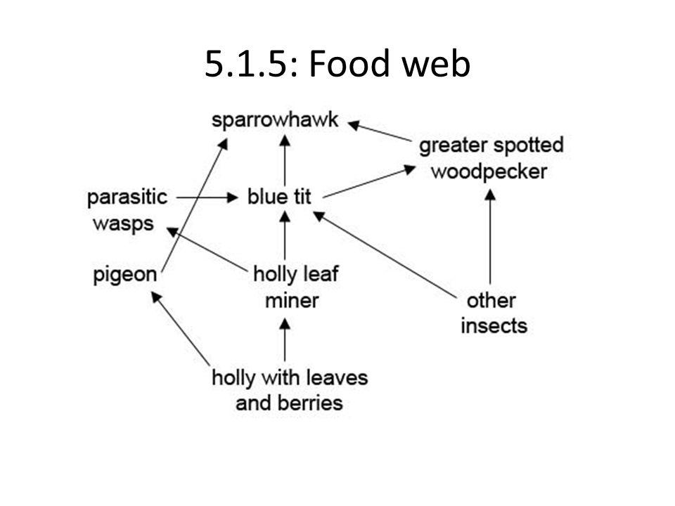 5.1.5: Food web