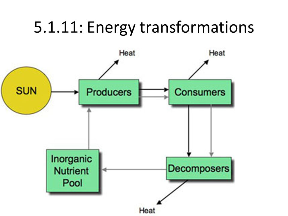 5.1.11: Energy transformations