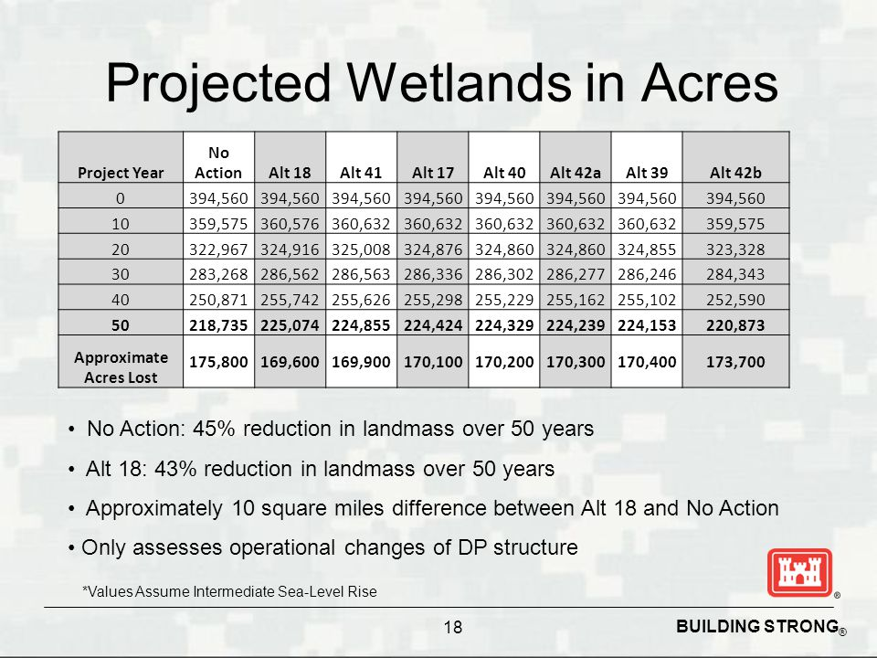 BUILDING STRONG ® Projected Wetlands in Acres No Action: 45% reduction in landmass over 50 years Alt 18: 43% reduction in landmass over 50 years Approximately 10 square miles difference between Alt 18 and No Action Only assesses operational changes of DP structure *Values Assume Intermediate Sea-Level Rise 18 Project Year No ActionAlt 18Alt 41Alt 17Alt 40Alt 42aAlt 39Alt 42b 0394,560 10359,575360,576360,632 359,575 20322,967324,916325,008324,876324,860 324,855323,328 30283,268286,562286,563286,336286,302286,277286,246284,343 40250,871255,742255,626255,298255,229255,162255,102252,590 50218,735225,074224,855224,424224,329224,239224,153220,873 Approximate Acres Lost 175,800169,600169,900170,100170,200170,300170,400173,700