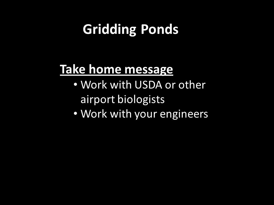 Take home message Work with USDA or other airport biologists Work with your engineers Gridding Ponds