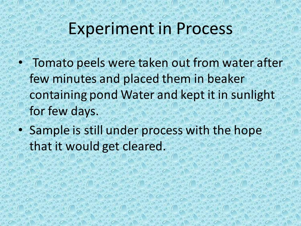 Experiment in Process Tomato peels were taken out from water after few minutes and placed them in beaker containing pond Water and kept it in sunlight for few days.