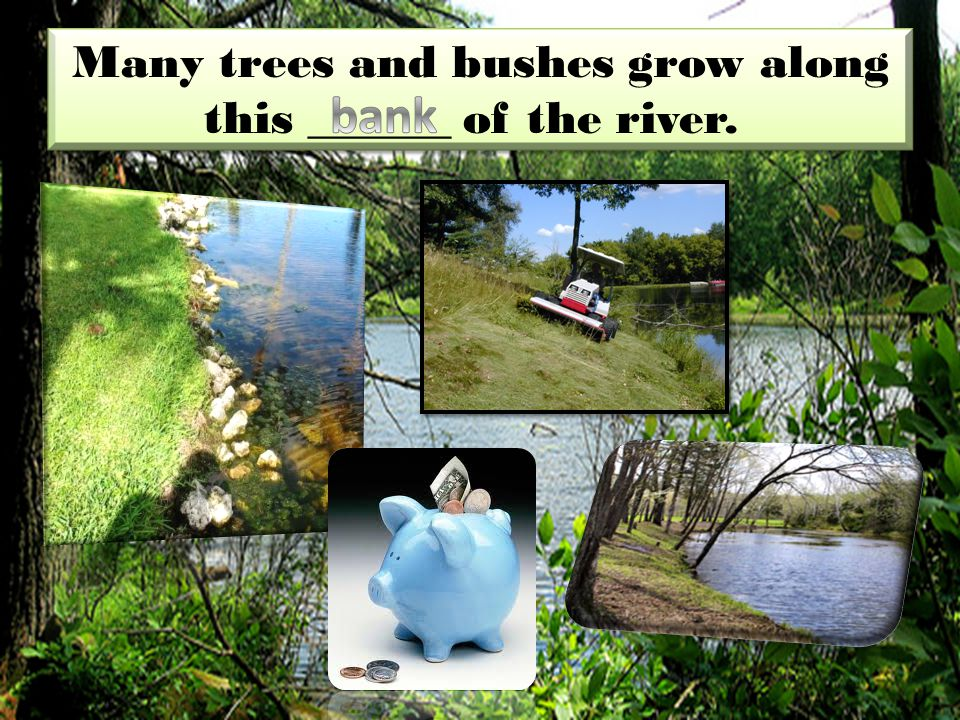 Many trees and bushes grow along this ______ of the river.