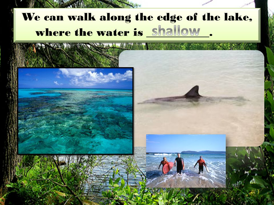 We can walk along the edge of the lake, where the water is ___________.