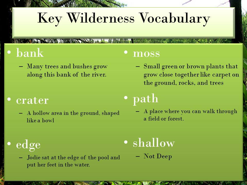 Key Wilderness Vocabulary bank – Many trees and bushes grow along this bank of the river. crater – A hollow area in the ground, shaped like a bowl edg