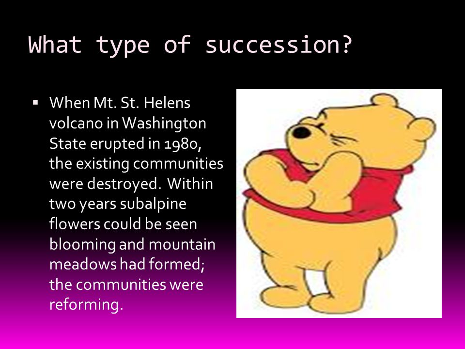 What type of succession.  When Mt. St.
