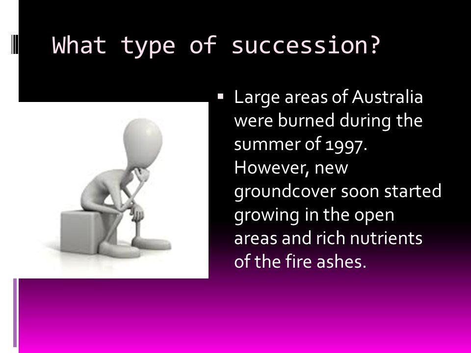 What type of succession.  Large areas of Australia were burned during the summer of 1997.