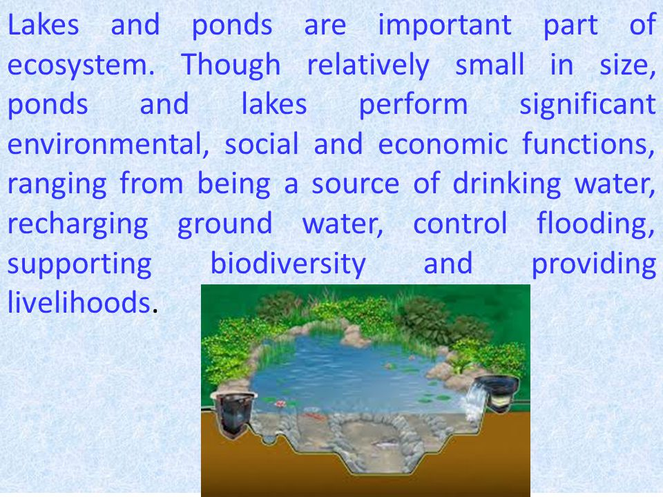 Water in lakes and ponds is an easily available source of water for the needs of many sectors of economy such as agriculture, domestic and industrial.