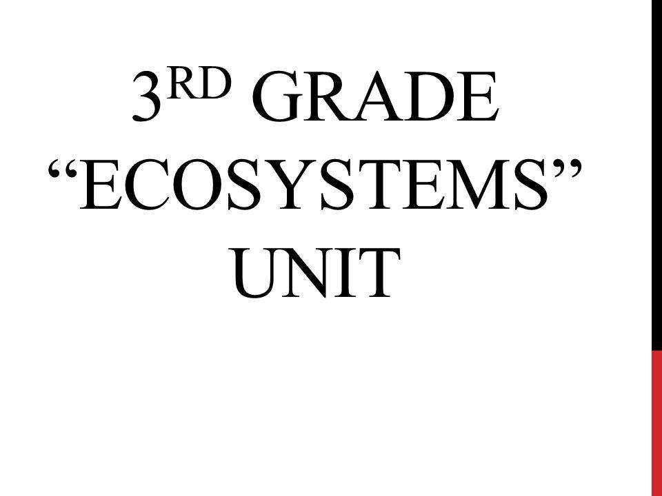 "3 RD GRADE ""ECOSYSTEMS"" UNIT"