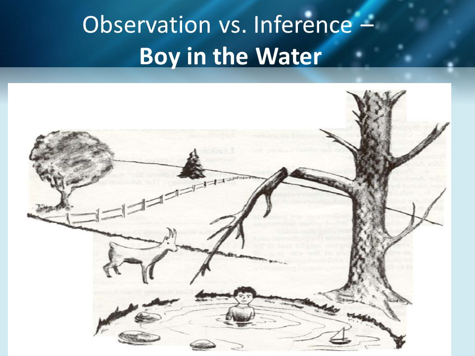 Sample Claim Evidence Reasoning Student Response Claim: The boy fell from the broken branch on the dead tree into the water while trying to retrieve his toy sailboat.