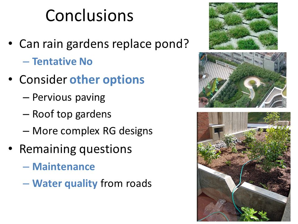 Conclusions Can rain gardens replace pond.