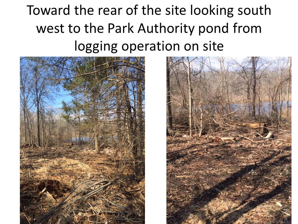 Toward the rear of the site looking south west to the Park Authority pond from logging operation on site
