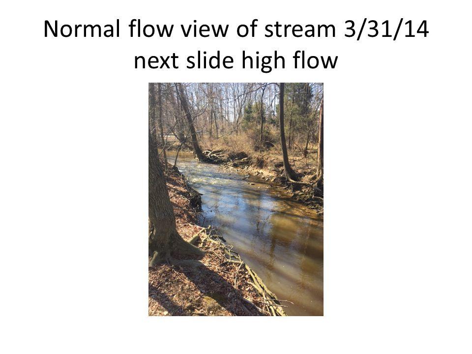 Normal flow view of stream 3/31/14 next slide high flow