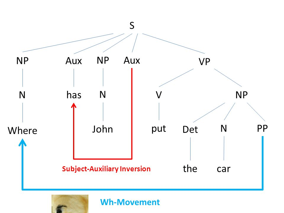 S NP N Aux has NP N Where John VP V put NP Det the N car PP Aux Subject-Auxiliary Inversion Wh-Movement