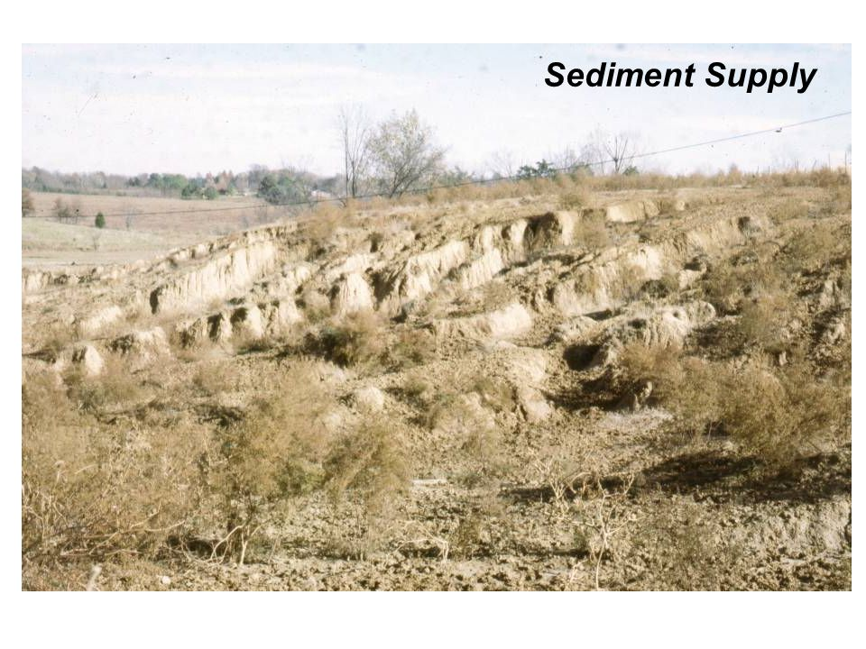 Sediment Supply