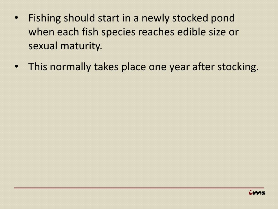 Fishing should start in a newly stocked pond when each fish species reaches edible size or sexual maturity. This normally takes place one year after s