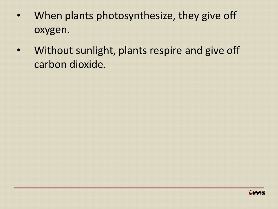 When plants photosynthesize, they give off oxygen. Without sunlight, plants respire and give off carbon dioxide.