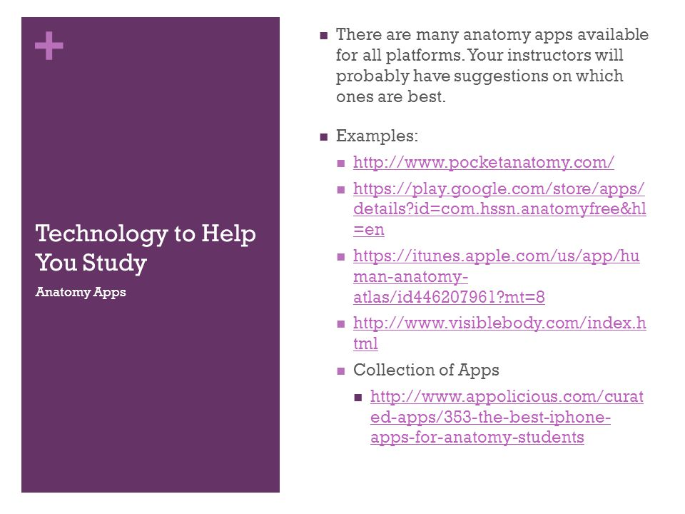 + Technology to Help You Study There are many anatomy apps available for all platforms.